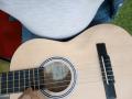 reducida panxa_guitarra